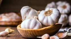 Regular consumption of garlic can cure vitamin deficiency, insulin sensitivity, and various other physical problems