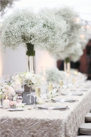 218 best babys breath wedding inspirations images on pinterest 218 best babys breath wedding inspirations images on pinterest wedding ideas weddings and wedding bouquets junglespirit Choice Image