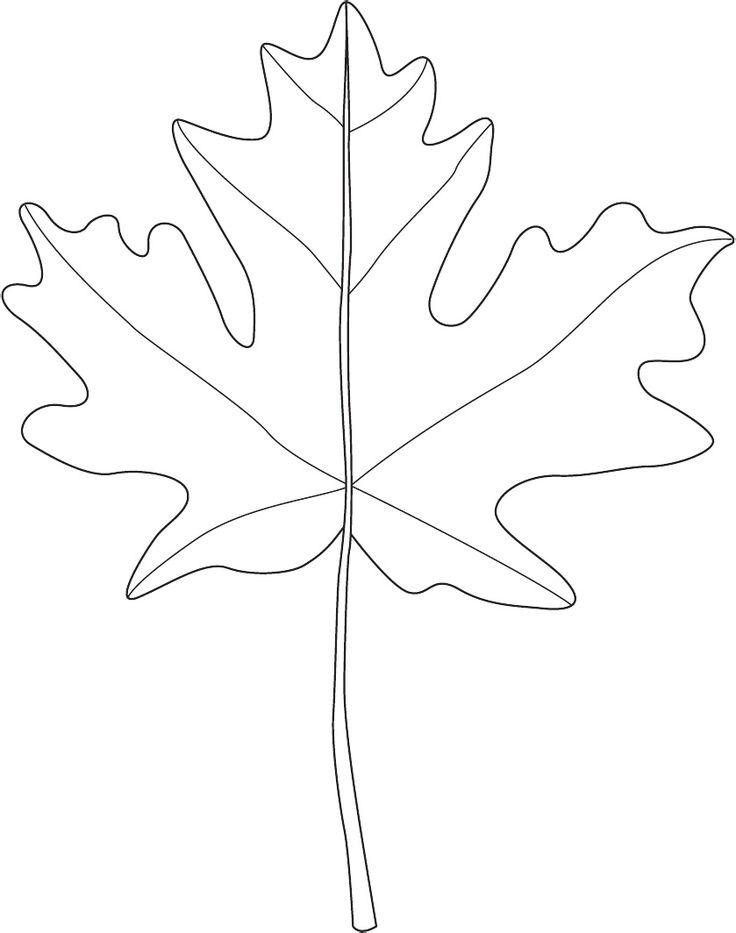 best 25 leaf patterns ideas on pinterest tropical pattern