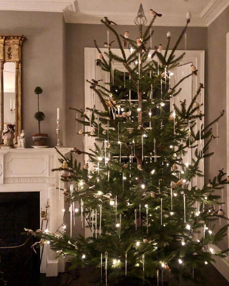 "Bruce Shostak on Instagram ""Obligatory Christmas tree"