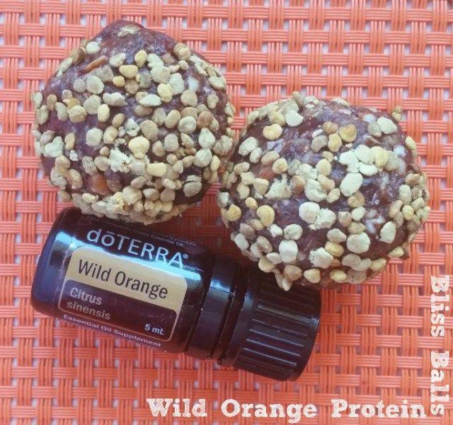 Wild Orange Protein Bliss Balls