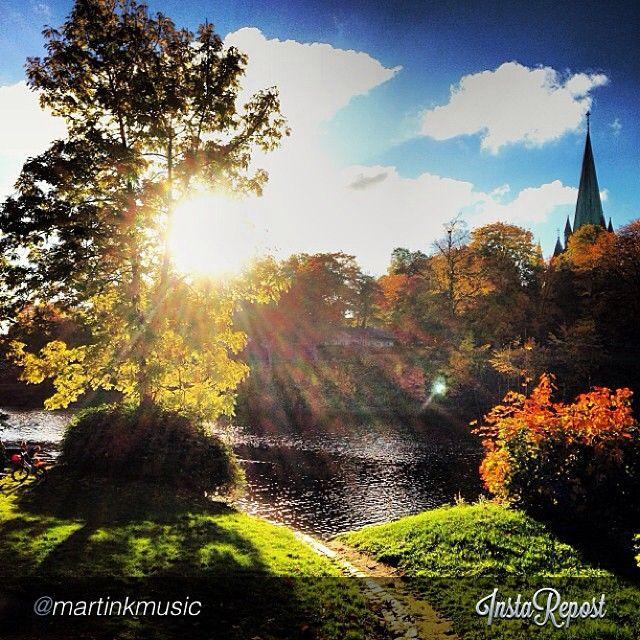 Autumn in Trondheim #travel #norway Photo: martinkmusic