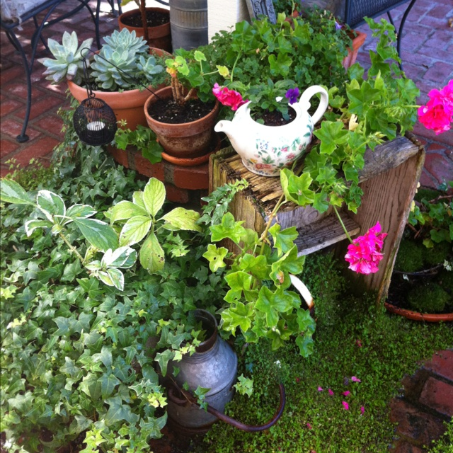 On the patio.: Outdoor Living, Wishes Xxx, Garden Wishes