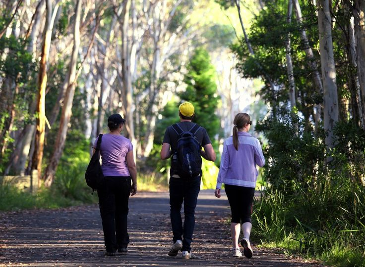 Take on the Macedon Ranges Walking Trail to experience beautiful scenery. Contact Visit Macedon Rangers for more information at: 1800 244 711