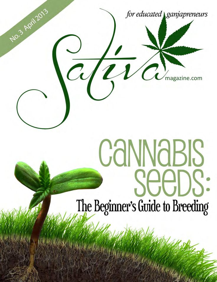 Sativa Magazine April Issue. The number one b2b Cannabis trade publication that has a little something for everyone.  Keywords: legalization, marijuana, legalize, 420, smoke shop, advertising, media kit, head shop, wholesale, retail, hand blown, pipe, amsterdam, weed cafe, weed lounge, seattle hempfest, cannabis cup, kush cup, maximum yield, expo, cannaculture, hightimes, high times, cannabis, indica magazine, indica, grow cannabis seeds, beans, gear, hemp, legalization, cannabis activists…