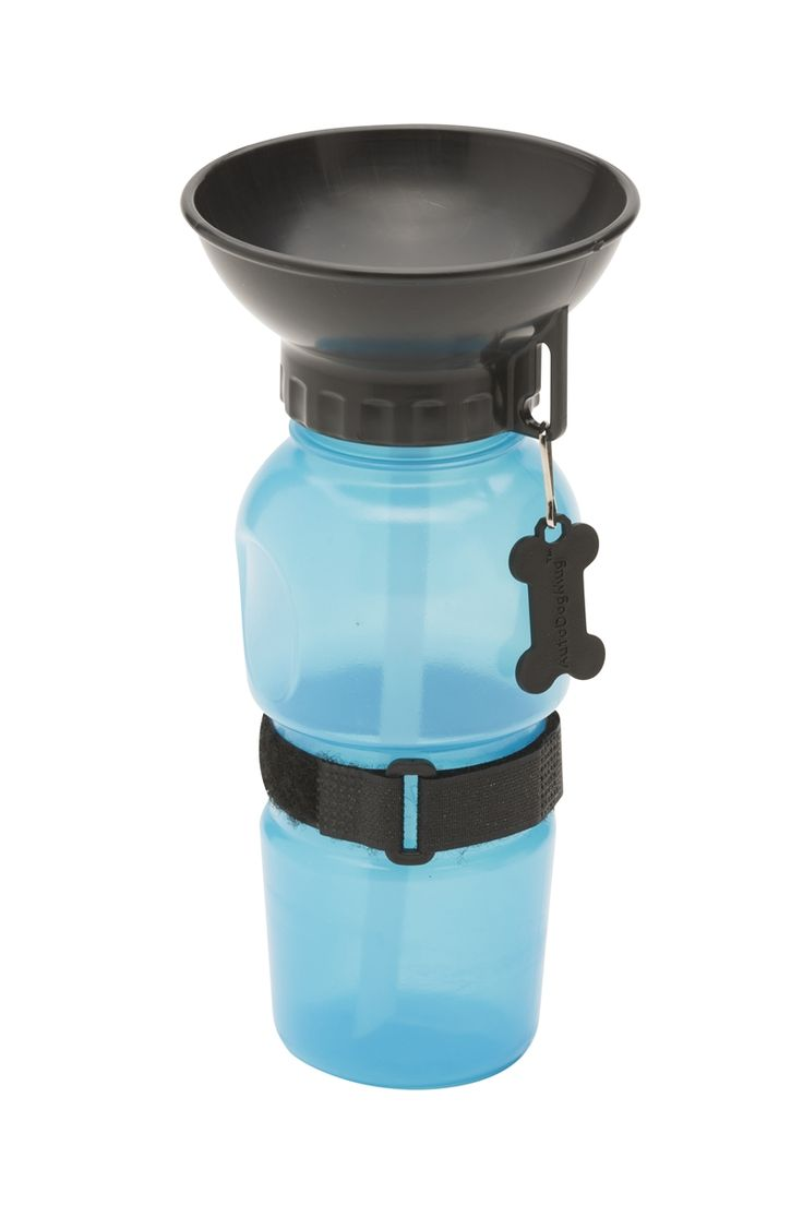 Best On The Go Water Bottle For Hikes With Dog