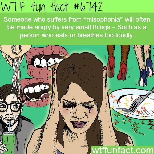 Misophonia - WTF fun fact