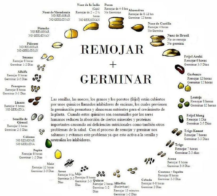 Optimal times for growing & watering different seeds / Tiempos optimos de…