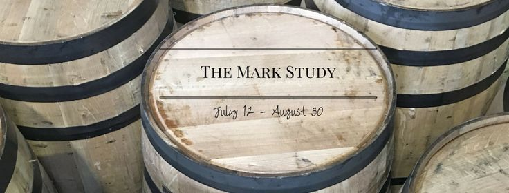 Want to dive into the Word? Don't know where to start? Come along as we dive into the gospel of Mark!