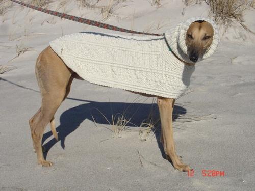 Dog Fisherman snood