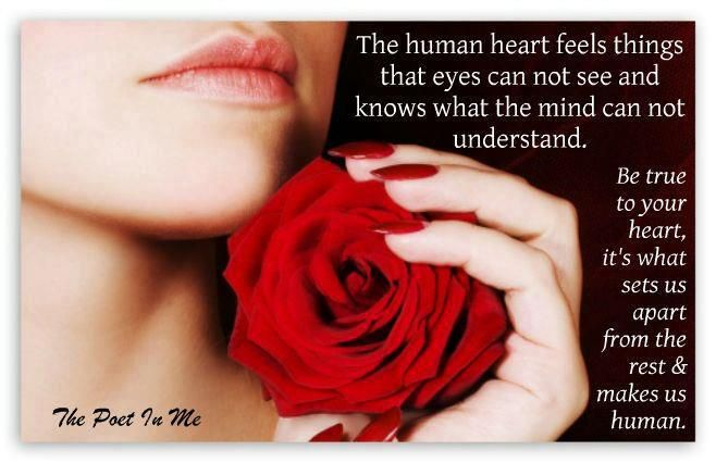 The heart as pure as the red roses