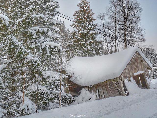 Ny uke...Ha en nydelig mandag! ❄️❄️❄️❄️❄️❄️❄️❄️❄️❄️❄️❄️❄️❄️ #great_captures_nature #ffn_member #kings_meteo #harte_ace #exceptional_pictures #loves_earth #pocket_allnature #tv_allnature #bestcaptureglobal #createscenery #loves_united_europe #loves_united_scandinavia #ig_week_norway #bella_shots #shotwithlove #ig_eurasia #ig_world_photo #rsa_folknature #igworldclub #igworldglobal #ig_brilliant #gottalove_a_ #vip_world_photo #gramofnature #phototag_it #living_europe #wu_norway #zamanidurdur…