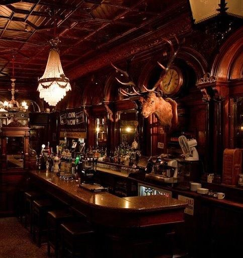 I like the darkness of the bar, and the moose on the wall. The L shape wrap around fits nicely with the way people would interact with each other /move in and out from bar. (Victorian Style)