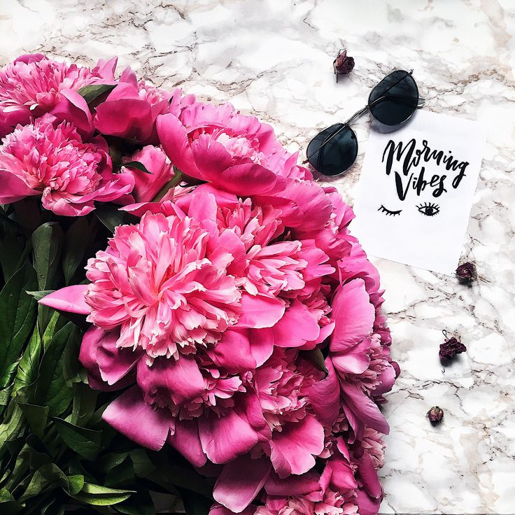 #flatlay #inspiration #flowers #cool