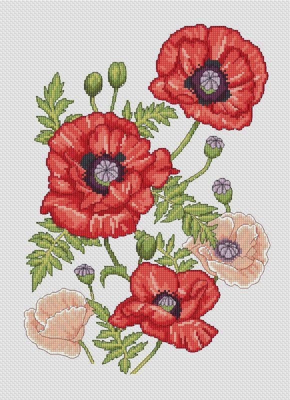 Oriental poppies cross stitch chart