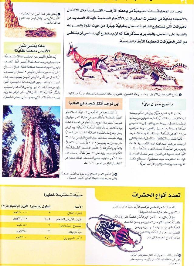 موسوعة سؤال وجواب عجائب الدنيا Arabic Books Books