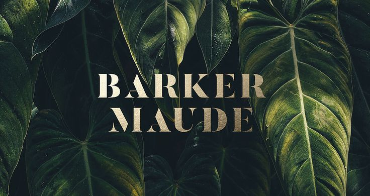 """Check out this @Behance project: """"Barker Maude""""…"""