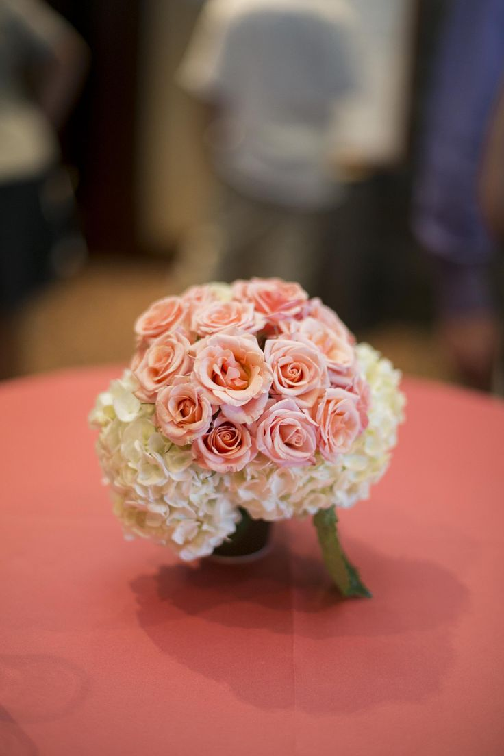 Coral Rose | White Hydrangeas