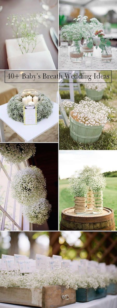 23 baby's breath wedding decoration ideas. Gypsophila is a symbol of purity, eternal love and innocence. Economical and long lasting, Gyp is perfect for wedding DIY.                                                                                                                                                                                 More