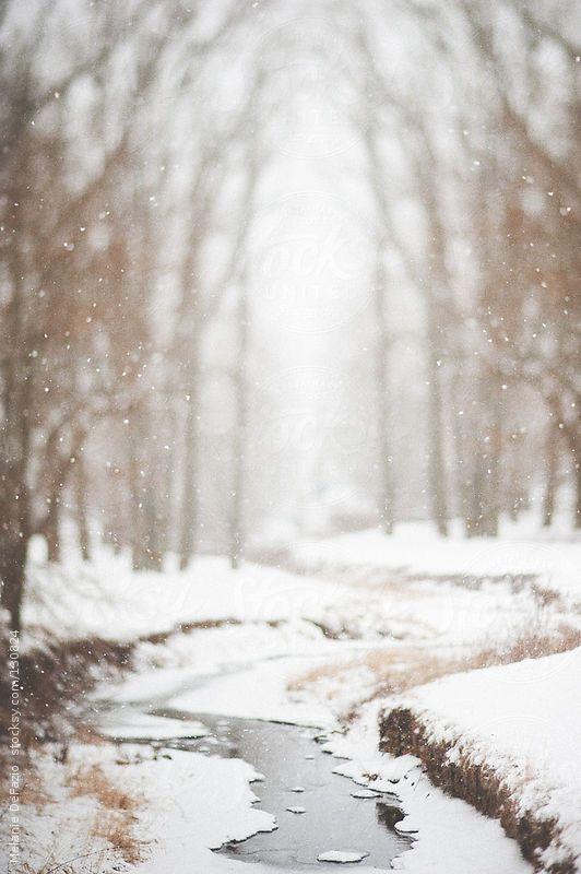Ecouter le silence de l'hiver.