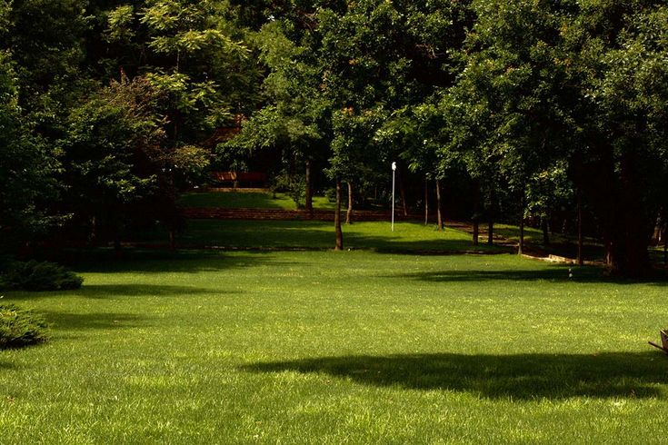 The Manasia Park reaches a surface of two hectares.