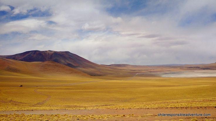 Aguas calientes saltflat surroundings, Atacama Desert highlands on the way to Sico pass (Chile.Argentina border)