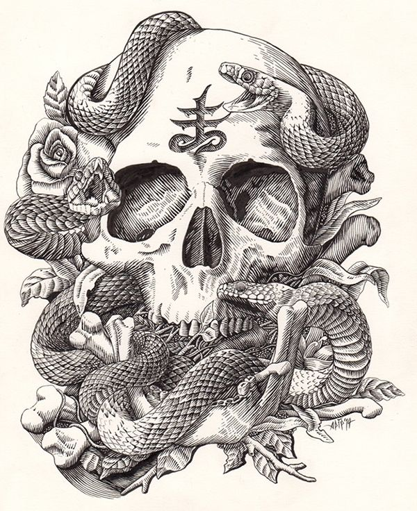 Skull and Snake on Behance by Sapip Tenktai