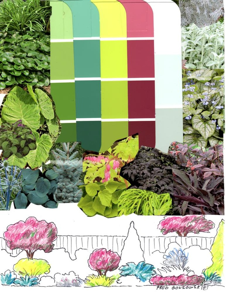 Colored Foliage adds that WOW FACTOR to a garden!