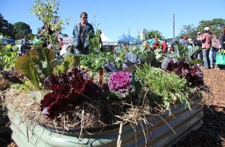 Learn how to grow your own at the QLD Garden Expo