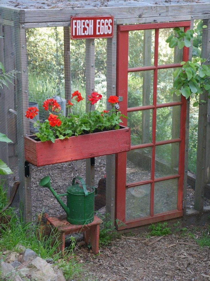 Screen door is for Chicken Coop here, but make bigger for summer gardening hut. Maybe use pergola top and hang wisteria.