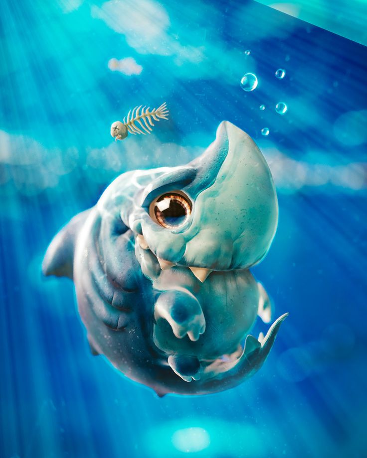 Cute Shark by Moulakhnif Ayoub | Creatures | 3D | CGSociety