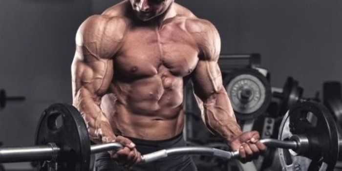 Consejos para ganar masa muscular - http://www.puntofape.com/consejos-para-ganar-masa-muscular-27301/ Quienes comienzan en el mundo del culturismo creen que lo importante para tener músculos grandes es entrenar duro. Sin embargo, después de un tiempo de entrenar hasta extenuarse comprenden que jamás alcanzarán su máximo potencial y ganar masa muscular sin una nutrición adecuada. En ocasiones,...