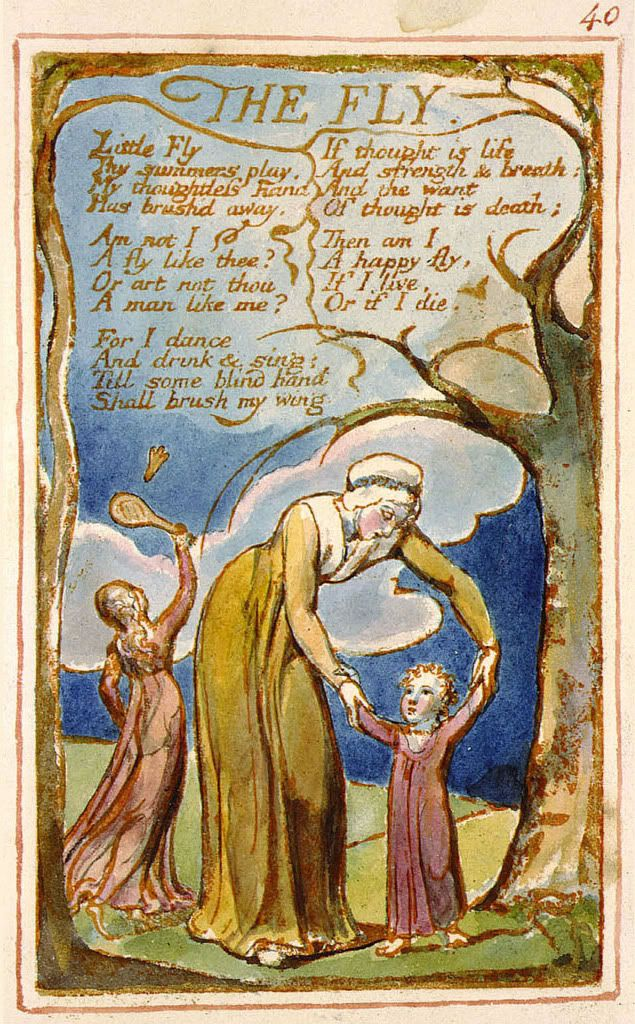 innocence and experience in william blakes poetry A william blake's songs of innocence and experience, written in 1794, is a  collection of poems that highlight his influence and role as a pioneer in the  romantic.