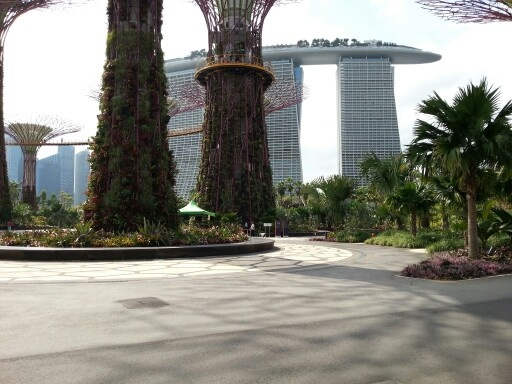 Gardens by the Bay with Marina Bay Sands in background