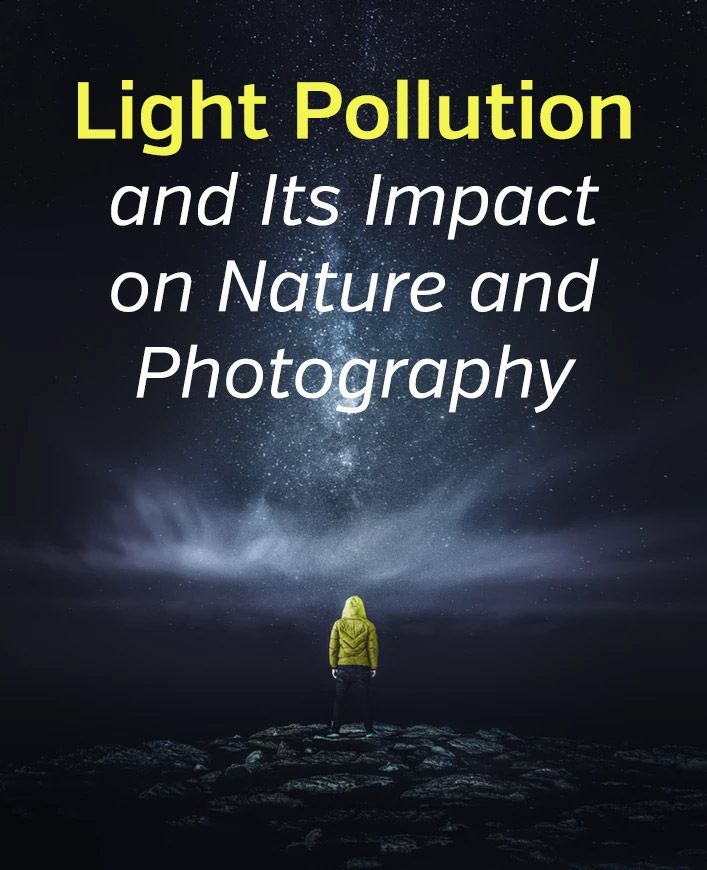 Light Pollution and Its Impact on Nature and Photography