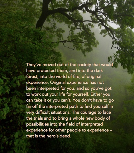 71 best images about Joseph Campbell on Pinterest | The wisdom ...