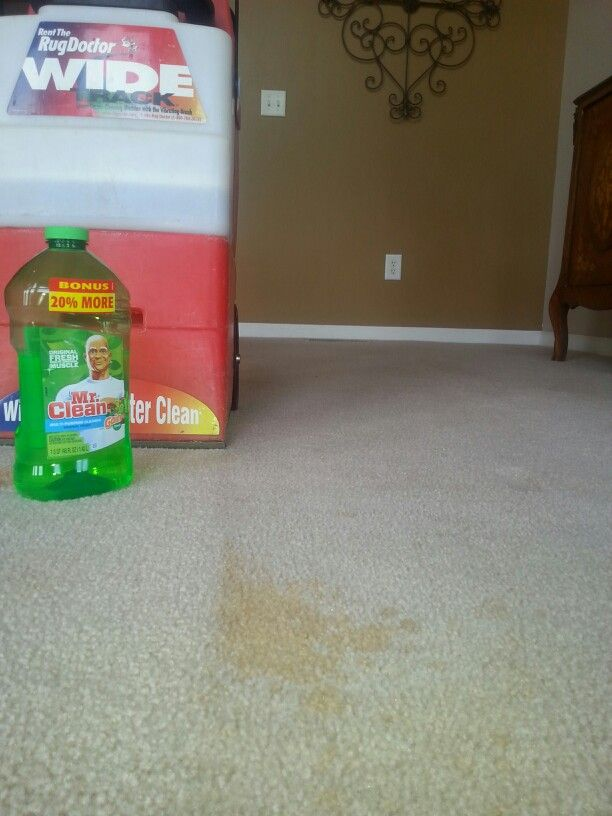 Use Mr. Clean in a Rug Doctor carpet shampooer. Cheaper than the brand name solution.  $3 v/s $20. My carpets are off white. The color in this solution will NOT stain your  carpet. See the treated side of the cola stain? I used Mr. Clean 'Gain' scented. My whole house smells like Gain dryers sheets! Use 1/2 cup of Mr. Clean per 2 gallons of hot water.