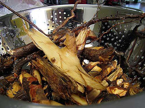 How to steep sassafras roots