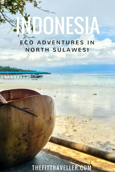 Indonesia: A Day of Eco Adventure Travel in North Sulawesi. From snorkelling off Bunaken Island Manado to meeting the selfie-loving monkeys; the crested black macaques in Tangkoko Nature Reserve.