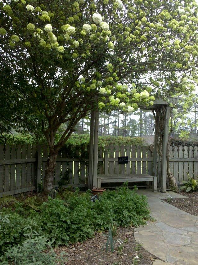 36 best CALLAWAY GARDENS images on Pinterest   Callaway gardens ...