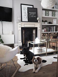 The 25 best Cowhide Rug Decor ideas on Pinterest Hide rugs