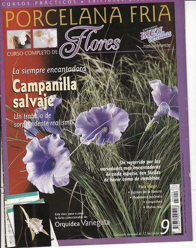 CURSO PRACTICO DE MODELADO EN PORCELANA FRIA BIENVENIDAS-FLORES -2005 N°09 - sandra mejia - Álbumes web de Picasa