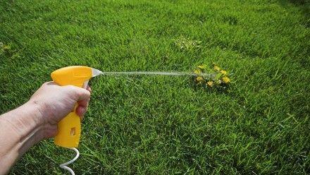 Rekonstrukce trávníku
