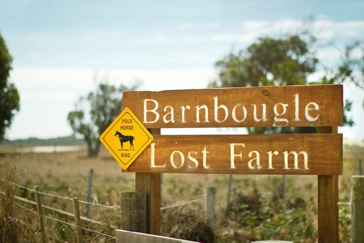 Some great images of Barnbougle Polo's progression from New Era Media.