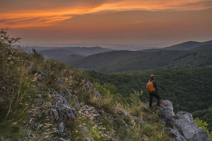 Gutter Krisztián: Egy forró nyári reggelen – Bükki Nemzeti Park