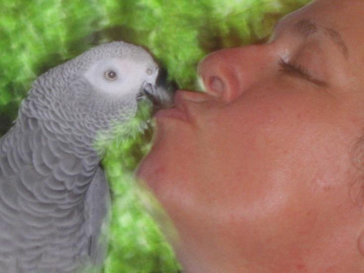 ok ,ok a little kiss, thank you !