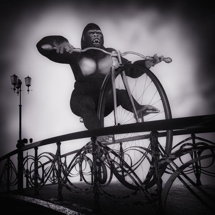 Gorilla on a bike by Vítězslav Koneval