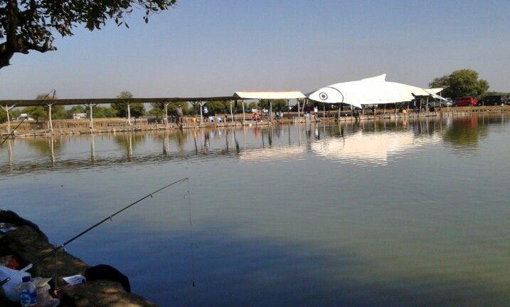 Kolam pancing laguna