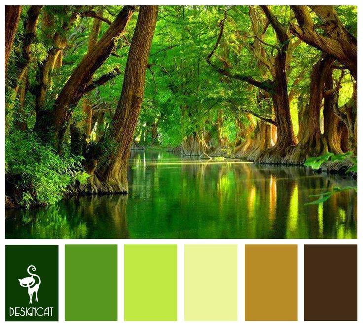 Rain Forest: Brown, Coffee, Sand, Beige, Green, Leaf ...