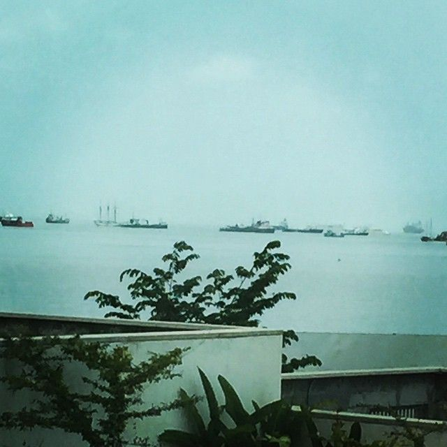 Ships in the Pacific, waiting to enter the Panama Canal